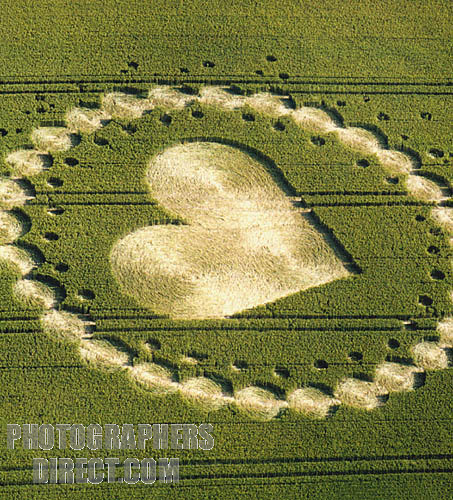 Heart-shaped crop circle in a Wiltshire field
