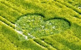 heartcropcircle3