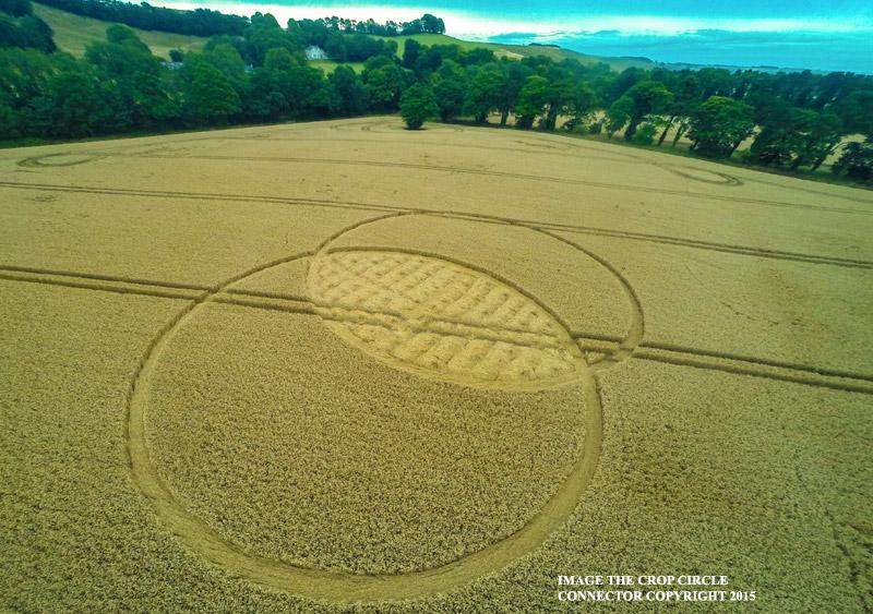 ccFox Hill, nr Liddington, Wiltshire, United Kingdom. Reported 9th August.G004090675bbb