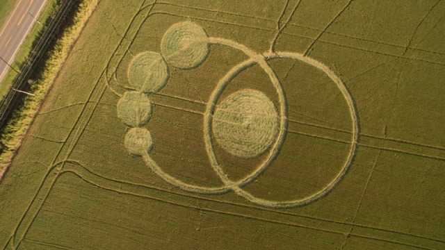 cropcircle Prudentópolis, Paraná, Southern Brazil. Reported 7th October.