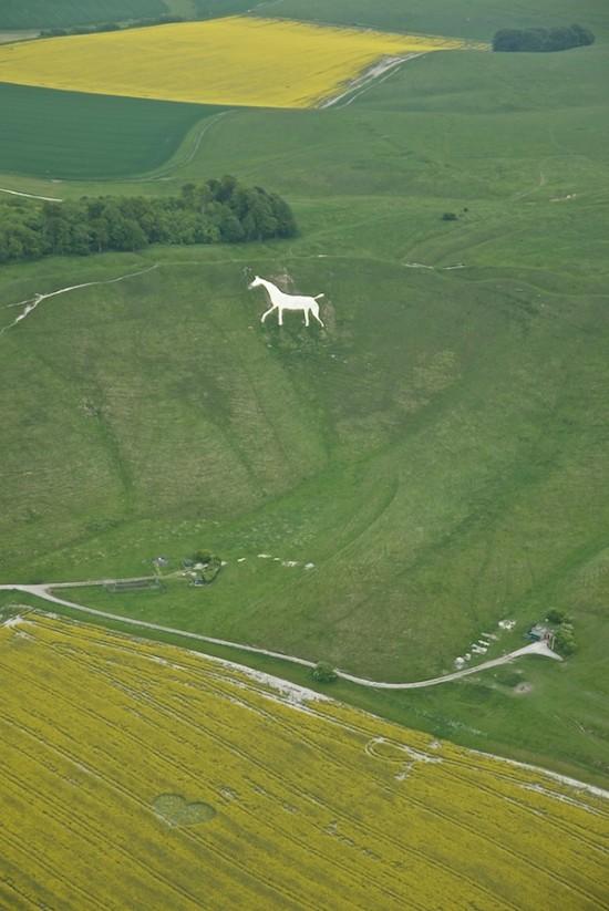 Cherhill-near-Calne-07062013-Wiltshire-United-Kingdom-550x823