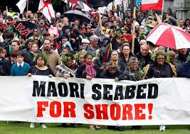 Image result for maori protest
