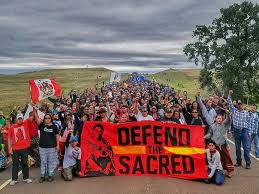 Image result for dakota protest